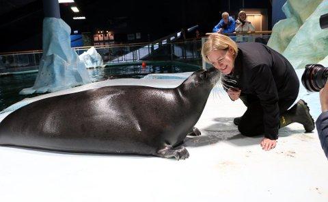 KYSS: I høst fikk nytilsatt daglig leder Anne Grete Johansen kyss på kinnet av storkobben Bella ved Polaria. Nå representerer Johansen en av bedriftene som ønsker å bruke tjenestedesign for å forbedre gjestenes opplevelse av Polaria.