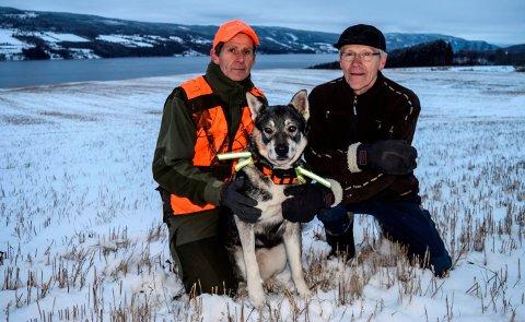 JAKTPAUSE: Svein Jøsendal (t.v.), jemthunden Zalah og Lars W. Grøholt har tatt seg en pause fra elgjakt på Veståsen (i bakgrunnen) etter at en jeger observerte ulv forrige helg.