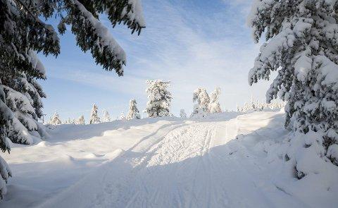 Idylliske scener som denne, fra området like ved Løvlia, kan bli å se i dagene som kommer. For nå blir det kaldt og fint vintervær igjen.