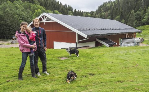 FJØSET: Ingunn, Oline og Even Opsal-Herslet med Border colliene Kid og Molly for det nye fjøset på Vestby gård.