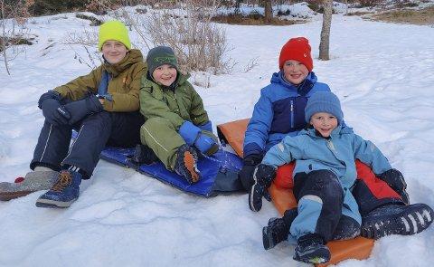 Trives på Vegårshei: Nå bor de i Myra, men snart flytter de til Kvennhuslia. Fv Otto (13), Jakob (6), Eskil (9) og Erling (4).