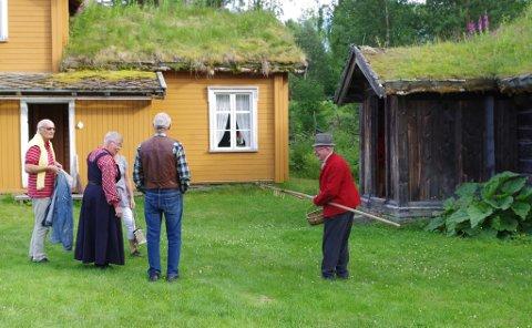 Lonåsstua (til høyre) er fra 1700-tallet. Det okergule huset ved siden av er Motrøstua.