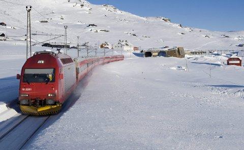 MILJØVENNLIG REISE: En reise er en gave som gir minner for livet. Reiser dere med tog, kan du gjøre turen miljøvennlig.