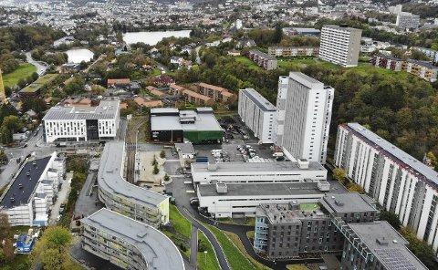 Kvinnen ble voldtatt i en leilighet på  Landås.