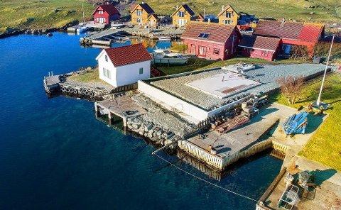 Tomt: Tomten ligger i Leiasundet på Kvitsøy.