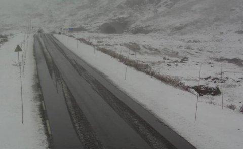SNØ: Slik såg det ut ved Grasdal på Strynefjellet litt over klokka 13.00 måndag.