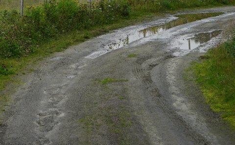 MANGE KILOMETER: Bestemmer politikerne seg for å bevilge de foreslåtte midlene, vil det være mange kilometer grusvei i Narvik som får nyte godt av det. Illustrasjonsfoto.