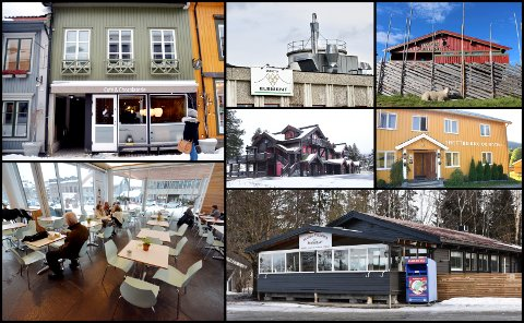Atelier Kakao AS, Snøhetta Element AS, Hygga Fjellkro AS, Matveveriet AS, Bjorlitunet AS, Tretten Kro og Motell AS og  Mjøsa Pizzeria & Restaurant AS.