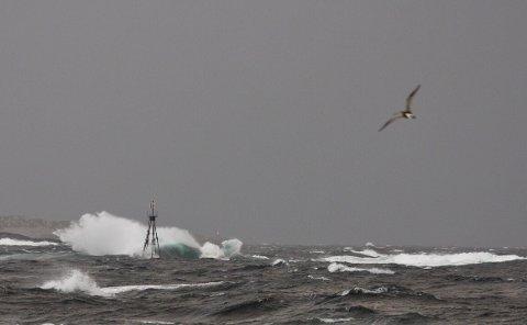 VIND: Slik så det ut langs Haugesunds kystlinje søndag morgen. Det skal blåse kraftig hele søndagen.