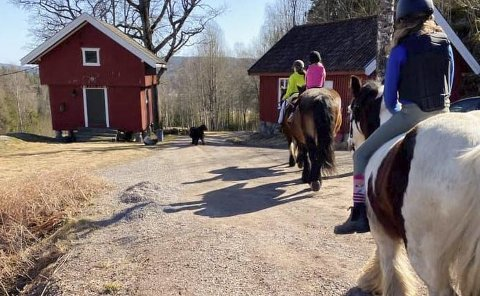 HESTEGÅRD: Her på Vestre Lian gård er det muligheter for å prøve å ri. Foto: privat