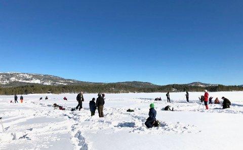 Jondalen Bygdelag arrangerte pilkedag på Buvannet søndag.