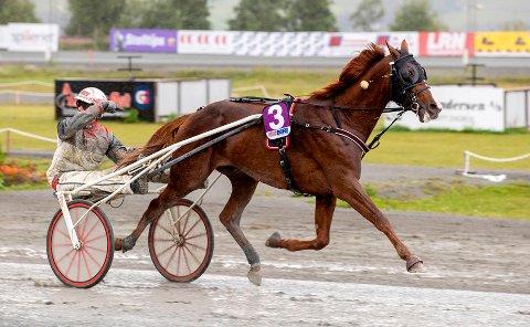 SE PÅ DENNE! Gøran Antonsen er imponert av sin eventyrhest Lionel som lørdag vant NM for tredje gang.