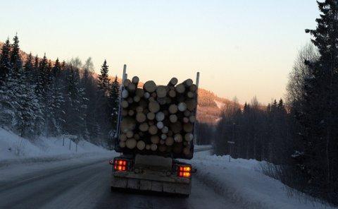 NIFS OPPLEVELSE: Dag Nordanger fikk seg en skikkelig støkk i møte med en tømmerbil som skal ha holdt svært høy fart og lastekranen hengende ned på den ene siden.