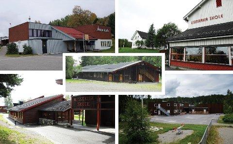 Bygdesamfunn: Skoler står sentralt i bygdene i Nordre Ringsaker.