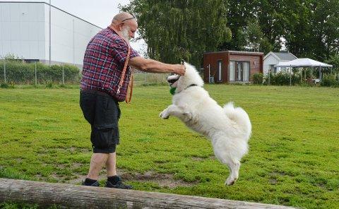 AKTIV: Terje Hundstad og Mushi er aktive brukere av både Facebook-gruppa og hundeparken.