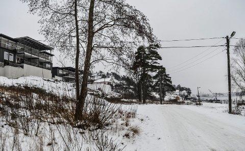 LANGESTRAND: Utbyggingsområdet sett mot sør fra Langestrandveien. T.v. de to leilighetsbyggene i Framnesveien 36. Skogen mot nord er for lengst hogd ned.