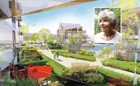 Aud Christensen mener det er unødvendig med utbyggingen av blokker på Nøtterøy, her illustrert med foreløpige skisser til storutbygging på Hjemseng.