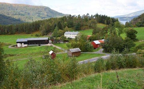 Svinvika ved Todalsfjorden.