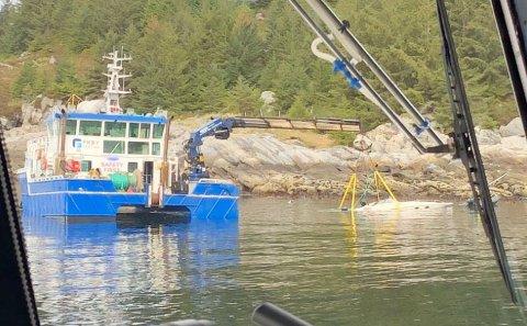 Livet til den 41 år gamle kvinnen som var i en båtulykke lørdag morgen, sto ikke til å redde.