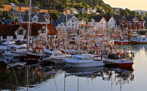 Trongt om plassen i hamna i Kalvåg, når makrellfiskarane ligg og ventar.