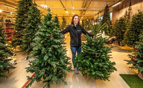 """EKTE OG PLAST: Det begynner etterhvert å bli vanskelig å se forskjell på plasttrærne og naturtræne. For ordens skyld, det er treet Elisabeth Moss Lundemo holde i venste hånd som er """"ekte""""."""