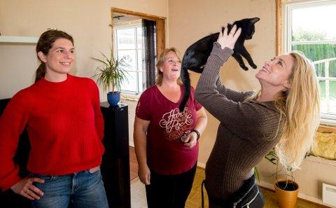 PÅ KATTEBESØK: Anna Louise Cappelen (t.v.) og Trude Mostue (t.h.) koste seg på besøk hos Gine Høivik og hennes seks katter. Denne kattungen har ennå ikke fått navn, men har helt klart sjarmen på plass.