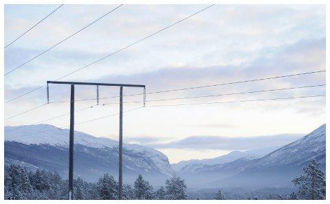- Sannsynligvis går nå Oslo Høyre inn for fusjonen. Det er åpenbart ikke fordi de ønsker å utvikle Hedmark og Oppland, skriver Sp-ordfører Ole Gustav Narud.