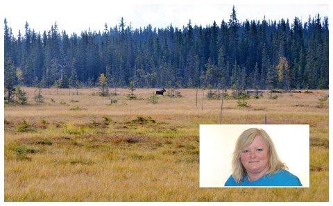 - Det er nødvendig med en fremtidig næringsutvikling av Nordseterområdet, men det området som grenser mot Gropmarka skal ikke utvides, skriver Mona Lillegaard (Frp)