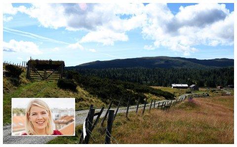 - Bak de vakre feriemotivene og den gode smaken av sommer står ei næring som med utgangspunkt i lokale ressurser skaper milliardverdier, arbeidsplasser og grunnlag for bosetting, skriver Gunn Jorunn Sørum.