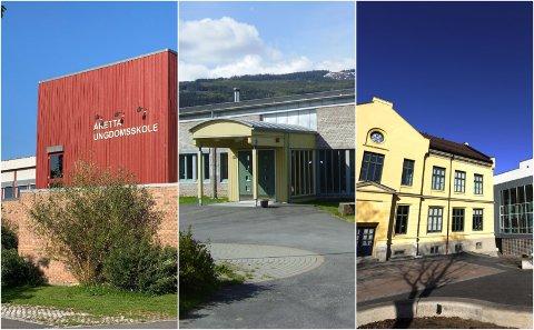 Tre skoler har vært berørt av et lokalt smitteutbrudd av koronaviruset i Lillehammer. FHI skriver i en risikovurdering at det er sannsynlig at utbruddet har sammenheng med pensjonistbussen som var innom byen i midten av september. – De har ikke konkludert med en sannsynlig sammenheng i møte med meg, sier kommuneoverlegen.