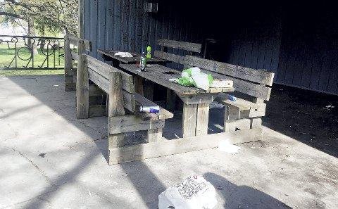 Søppel og matrester: Mange liker å bruke fasilitetene i Hagemannsparken, men oppryddingen overlates til andre. – Rydd opp oppfordrer Swinglett, som skulle øve her torsdag. Foto: Swinglett
