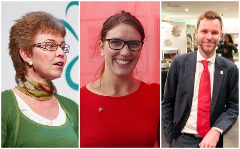 TAR DET OPP I FYLKESTINGET: Kathrine Kleveland (Sp), Maren Njøs Kurdøl (Rødt) og Truls Vasvik (Ap) mener staten må gå inn og sikre at Hydro-verket i Holmestrand forblir norsk.