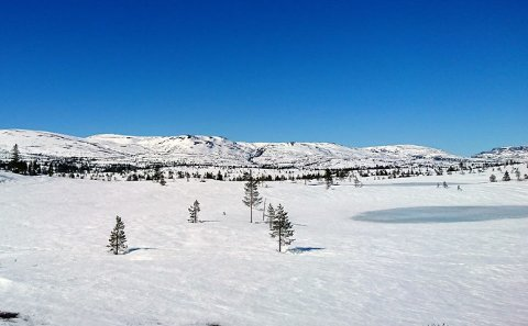 BLEFJELL MANDAG: På bildet ser du fra venstre Gunnulvsbu-ble, Flesebekkble, Gunnulvsbunatten, Dølen, Flesebekknatten, Uverudfjell og litt av Åklinuten.