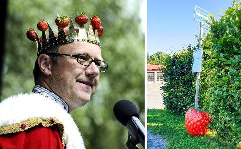 På bærtur: Et av de store jordbærene på jordbærgården Simen Myhrene ble funnet på bussholdeplassen ved meieriet i Sylling i fredag morgen.