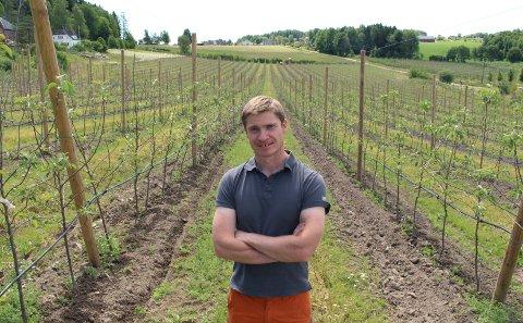 LANG LAGRING: Finesse-trærne bak Harald Borgebund produserer epler som kan lagres i nesten 12 måneder.