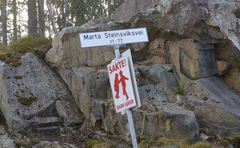 VIL HA FORSLAG: Nå kan du komme med ditt alternative navneforslag til Marta Steinsviks vei. Arkivfoto: Kristin Trosvik