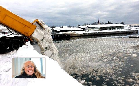 INDRE HAVN: Kommunalsjef Hilde Bøkestad mener det er snakk om lite forurensing i forbindelse med dumping av snø.