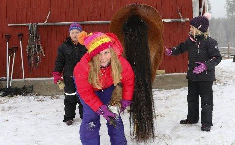 MORO: – Det er veldig moro å være her, sier Signe Wingeng Bjervamoen i full sving med å rense hovene til Fagri av Korsmo.