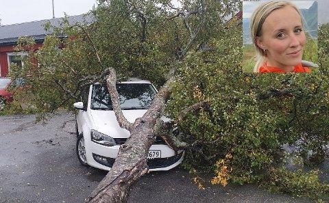 Slapp med skrekken: Slik så det ut etter at treet hadde falt over Veronica Enges bil på vei ut fra Tiøringen barnehage.