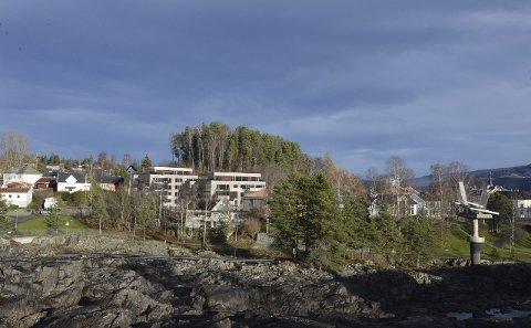 SETT FRA ØYA: Slik skal Nordre Park Boligsameie se ut fra Øya-området. Sankthanshaugen er bak blokkene, som knapt skal bli synlige fra bybrua. SKISSE: LINK ARKITEKTUR