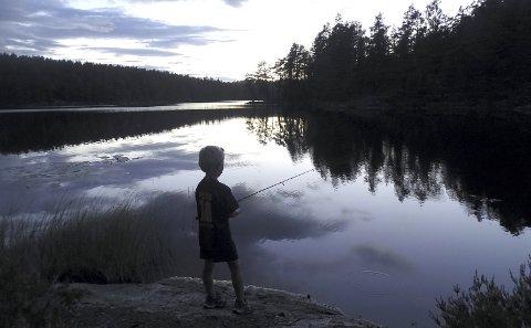 Kveldsstemning: Ulrik Lurud fra Enebakkneset prøver fiskelykken i Bråtatjenn mens sola går ned. Dette bildet markerer også slutten på årets fiskekonkurranse i Romerikes Blad. Alle foto: Privat