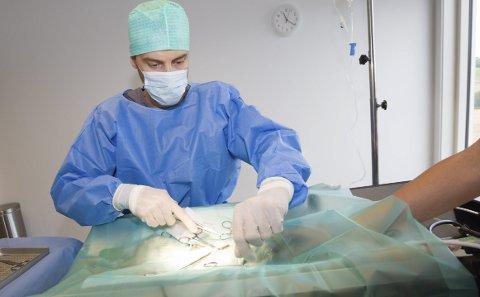 LAV PRIS – LAV KVALITET: Rune Næverdal, veterinær ved Skedsmo Dyreklinikk, mener flere av billigklinikkene tilbyr tjenester av dårlig kvalitet. Her utfører han kastrering av en hunnkatt.FOTO: TOM GUSTAVSEN
