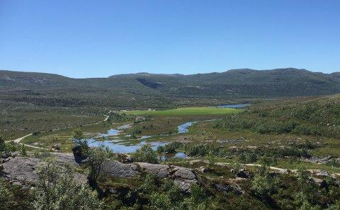 NEI TIL DYRKING: Bonden meinte det nye dyrkingsfeltet ville vera ei naturleg utviding av området som alt er dyrka. Fylkesmannen i Vestland ville det annleis.