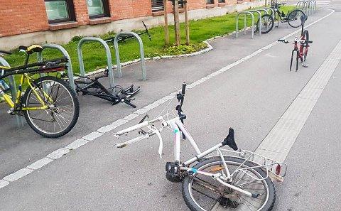 IKKE ANMELDT: Minst fem ødelagte og delvis stjålne sykler utenfor VKT/Farmandstredet var synet som møtte Marthe Viken Tvedt da hun fredag kveld skyndet seg for å rekke bussen.