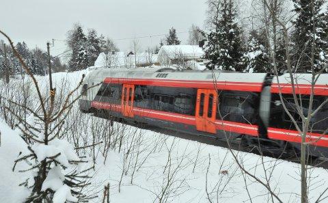 PÅKJØRSLER AV DYR: Rådyr er det dyret som er mest utsatt for å bli påkjørt av tog sør på Gjøvikbanen, viser tall fra Bane Nor.