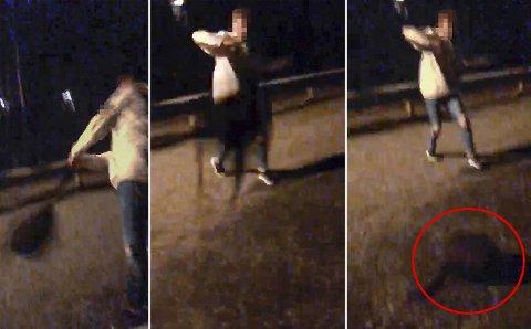 Mishandlingen av katten ble filmet av en av ungdommene. Katten lå i den svarte sekken som ble kastet rundt.