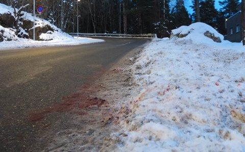 Her ble et rådyr, ifølge bileier jaget av en hund, påkjørt av en bil med tilhenger. Rådyret overlevde kollisjonen, men ble avlivet senere. Hendelsen skjedde i Underlia.