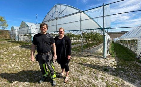 TRENGER SESONGHJELP: Henning og Henriette Lyche Røed  foran drivhuset med bjørnebær. De håper at sesongarbeiderne fra Vietnam kan komme også i år. (Foto: Øivind Lågbu)