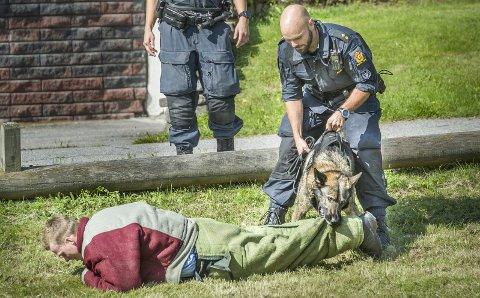 FAST GREP: Bankraneren hadde ikke en sjanse mot patruljehunden Max og hundefører Christian. De hadde kommet fra Oslo for å være med på biljakt og pågripelse med skarp hund som var et av høydepunktene under Politiets dag på Sæter lørdag.