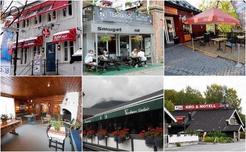 Noen av spisestedene som ble kontrollert i oktober.